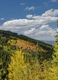 Βουνά του Κολοράντο του πορτοκαλιού, κίτρινα, και πράσινα Στοκ Φωτογραφίες