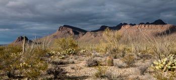 Βουνά του Tucson Στοκ Εικόνες