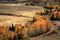 βουνά φθινοπώρου Στοκ Εικόνες