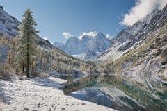 Βουνά Altai, Ρωσία, Σιβηρία στοκ εικόνες