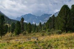 Βουνά Altai, Ρωσία Στοκ Εικόνες
