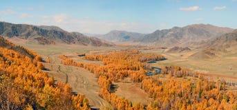 Βουνά Altai φθινοπώρου Στοκ Φωτογραφία