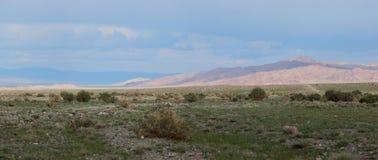 Βουνά Altai. Όμορφο τοπίο ορεινών περιοχών στοκ εικόνες