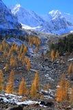 Βουνά Altai Στοκ Εικόνες