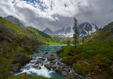 Βουνά Altai Στοκ εικόνες με δικαίωμα ελεύθερης χρήσης