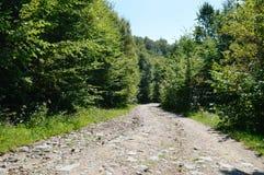 Βουνά Apuseni Στοκ εικόνα με δικαίωμα ελεύθερης χρήσης