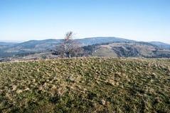 Βουνά Beskid Slaski φθινοπώρου από το λόφο Ochodzita στην Πολωνία Στοκ Εικόνα