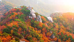 Βουνά Bukhansan το φθινόπωρο στην Κορέα Στοκ φωτογραφία με δικαίωμα ελεύθερης χρήσης