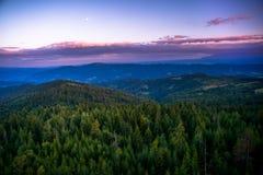 Βουνά Gorce Στοκ Εικόνες