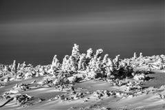 Βουνά HDR Στοκ Εικόνα