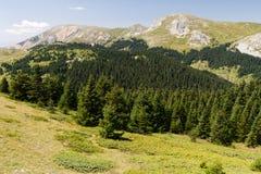Βουνά Ilgaz, Kastamonu, Τουρκία Στοκ Εικόνα