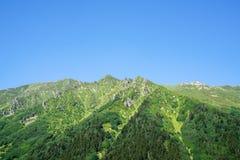Βουνά Kackar με το πράσινο δασικό τοπίο σε Rize, Τουρκία στοκ φωτογραφία