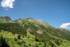 Βουνά Kackar με το πράσινο δασικό τοπίο σε Rize, Τουρκία Στοκ φωτογραφία με δικαίωμα ελεύθερης χρήσης