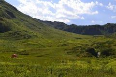 Βουνά Krasnaya Polyana, Sochi, Ρωσία Στοκ φωτογραφίες με δικαίωμα ελεύθερης χρήσης