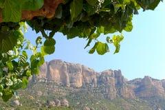 Βουνά Montsant, Priorat (aka Priorato), Ισπανία Στοκ εικόνα με δικαίωμα ελεύθερης χρήσης