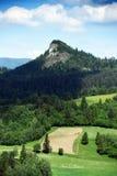 Βουνά Pieniny στη Σλοβακία και την Πολωνία Στοκ Εικόνες