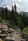βουνά retezat Στοκ φωτογραφία με δικαίωμα ελεύθερης χρήσης