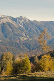 Βουνά Sengsengebirge Στοκ Εικόνες