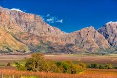 Βουνά Slanghoek, δυτικό ακρωτήριο, Νότια Αφρική στοκ φωτογραφίες