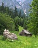 Βουνά Tatra, Πολωνία στοκ εικόνα