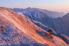 Βουνά Wugong στοκ φωτογραφίες με δικαίωμα ελεύθερης χρήσης