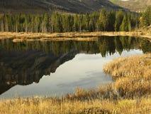 βουνά Wyoming στοκ φωτογραφία