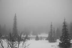Βουνά - Zakopane το χειμώνα Στοκ εικόνες με δικαίωμα ελεύθερης χρήσης