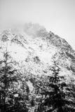 Βουνά - Zakopane το χειμώνα Στοκ Φωτογραφία