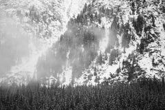 Βουνά - Zakopane το χειμώνα Στοκ Εικόνα