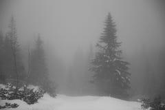 Βουνά - Zakopane το χειμώνα Στοκ Φωτογραφίες