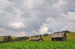βουνοπλαγιά Στοκ Φωτογραφίες