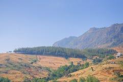 Βουνό βερκέλιων σκαφών Phu στοκ φωτογραφίες με δικαίωμα ελεύθερης χρήσης