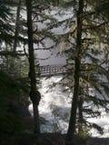 βουνό γεφυρών πέρα από το βρυχηθμό ποταμών ξύλινο Στοκ εικόνες με δικαίωμα ελεύθερης χρήσης