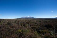 Βουνό ερήμων πάρκων Tongariro Στοκ φωτογραφίες με δικαίωμα ελεύθερης χρήσης