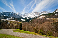Βουνό και δάσος στοκ εικόνα με δικαίωμα ελεύθερης χρήσης
