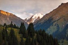 Βουνό και δάσος Στοκ Εικόνες