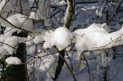 Βουνό και κοιλάδα κάτω από το χειμερινό χιόνι Στοκ φωτογραφία με δικαίωμα ελεύθερης χρήσης