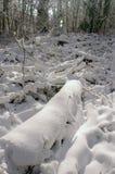 Βουνό και κοιλάδα κάτω από το χειμερινό χιόνι Στοκ εικόνα με δικαίωμα ελεύθερης χρήσης