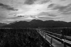 Βουνό και ξύλινη γέφυρα Στοκ φωτογραφίες με δικαίωμα ελεύθερης χρήσης
