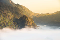 Βουνό και ομίχλη το πρωί σε Doi Angkhang, Chiangmai Thail Στοκ φωτογραφίες με δικαίωμα ελεύθερης χρήσης