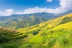 Βουνό και φύση στο πεζούλι ρυζιού του τοπίου του Βιετνάμ Στοκ εικόνες με δικαίωμα ελεύθερης χρήσης