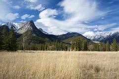 βουνό λιβαδιών ηλιόλουσ& Στοκ εικόνα με δικαίωμα ελεύθερης χρήσης