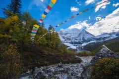 Βουνό με τις σημαίες προσευχής χιονιού και δασών και του Θιβέτ πεύκων Στοκ εικόνα με δικαίωμα ελεύθερης χρήσης