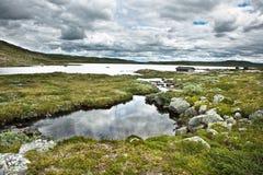 βουνό νορβηγικά Στοκ εικόνες με δικαίωμα ελεύθερης χρήσης
