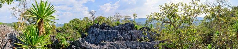 Βουνό πάρκων κοραλλιών, εθνικό πάρκο Doi Phaklong, πανόραμα Στοκ Εικόνες