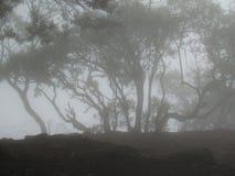 Βουνό που καλύπτεται μακρινό στην υδρονέφωση στοκ φωτογραφίες