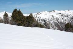 βουνό Πυρηναία χιονώδη Στοκ Εικόνα