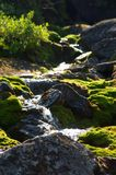 βουνό ρυακιών Στοκ εικόνα με δικαίωμα ελεύθερης χρήσης