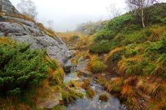 βουνό ρυακιών Στοκ φωτογραφίες με δικαίωμα ελεύθερης χρήσης