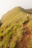 βουνό Ταϊλάνδη Στοκ Εικόνες
